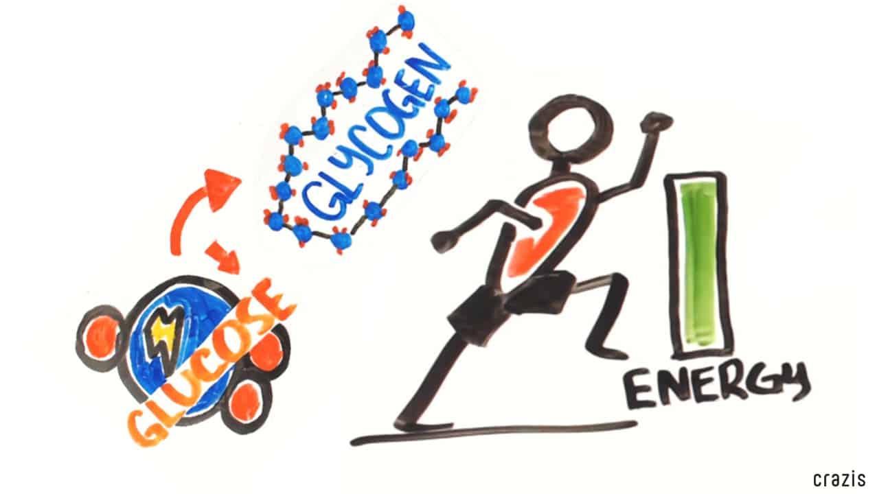 Carb Cycling Diet tăng cường quá trình trao đổi chất